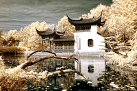 The Gift Shop at the Chinese Garden - IR